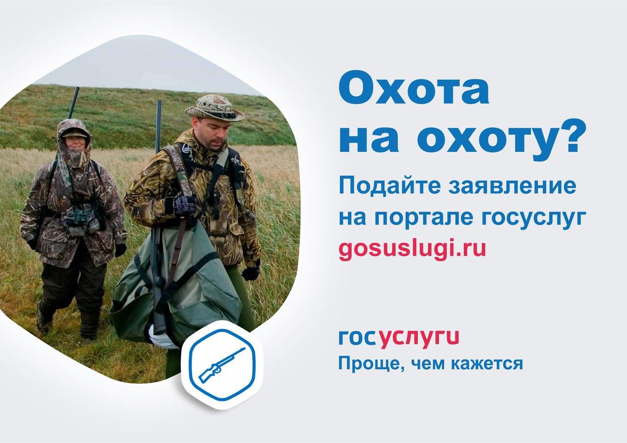 Как оформить разрешение на охоту на портале Госуслуг