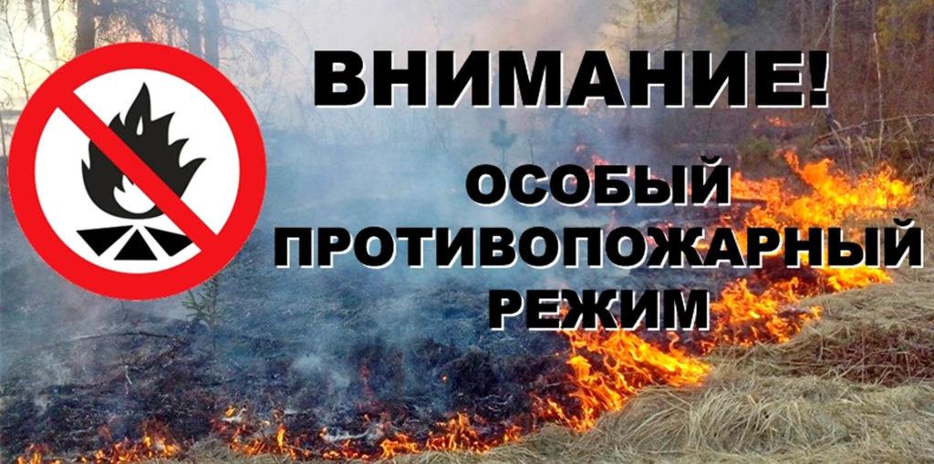 На территории города Кузнецка действует особый противопожарный режим