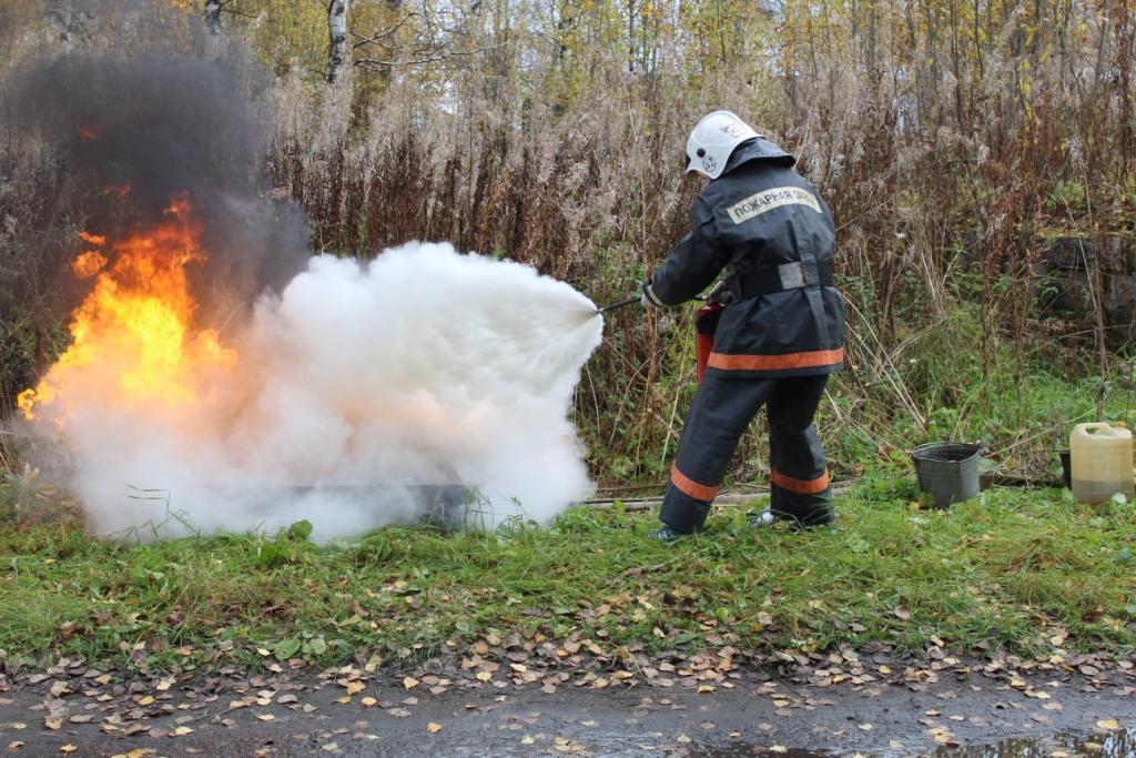 С 15 апреля по 14 мая в Кузнецке объявлен месячник по пожарной безопасности