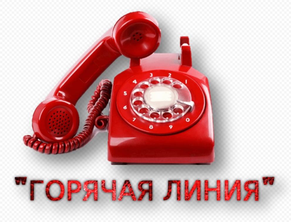 В Пензенской области открыты телефоны «горячих линий» по организации обучения с использованием электронных и дистанционных образовательных технологий
