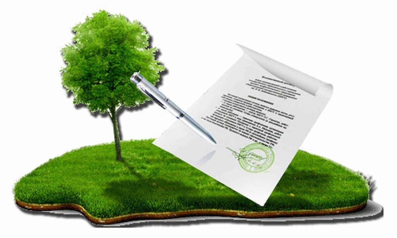 В Пензенской области введена отсрочка арендной платы за земельные участки, государственная собственность на которые не разграничена