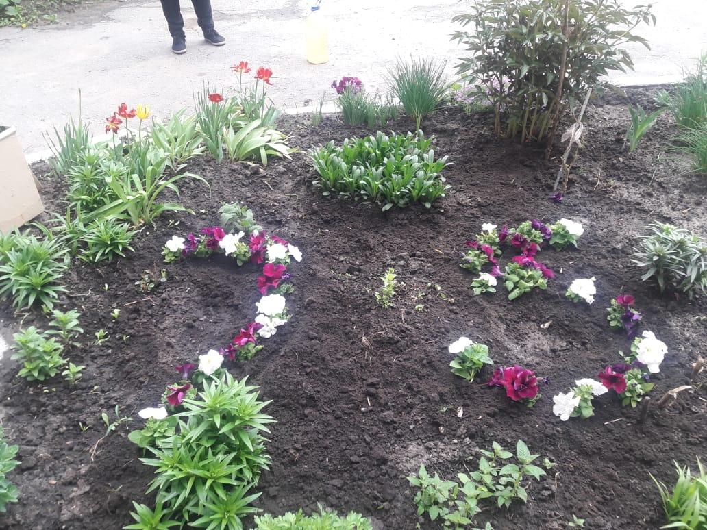 В Кузнецке под окнами домов ветеранов войны разбили клумбы и посадили цветы , оформив цифрой 75
